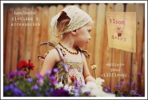 bloom daisy folkways farm