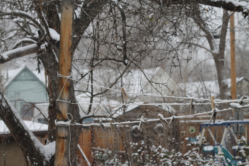 winter at folkways farm