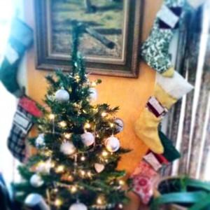 Oh, Christmas Tree.